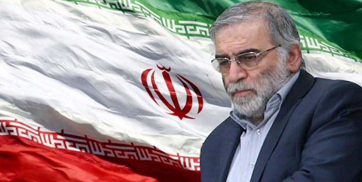 کنایه استاد دانشگاه کالیفرنیا به استانداردهای دوگانه غرب درباره ترور دانشمندان ایرانی