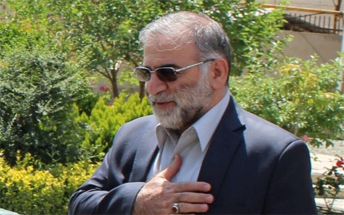 شهید محسن فخریزاده